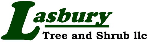 Baltimore, Towson and Columbia Tree Service